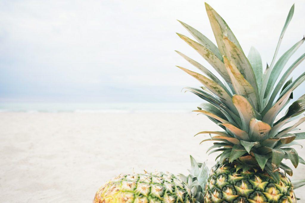 Tige d'ananas riche en bromelaïne